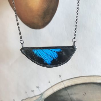 Half Oval Blue Mountain Swallowtail Butterly Pendant