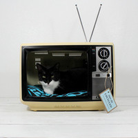 Upcycled Vintage Sanyo TV Pet Bed by AtomicAttic on Etsy