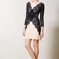 Patchwork Lace Pencil Dress by Peter Som for Made in Kind Blue Motif 4 P Skirts
