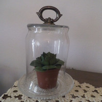 Beautiful upcycled CLOCHE Glass Dome with Fleur De Lis and  silverplate Tray... Cottage chic Terrarium or display