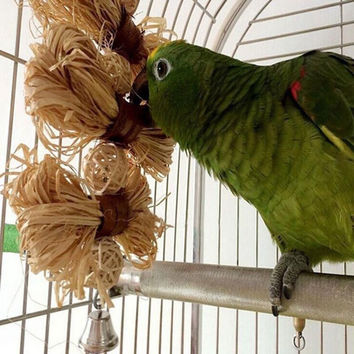 Lovely Pet Conure Cockatiel Parakeet Chewing Toy Parrot Bird Bites Swing Loofah Vine Balls Cages Toys