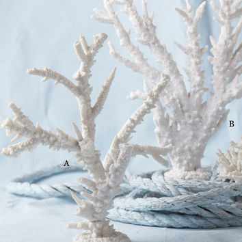 White Coral Sculptures