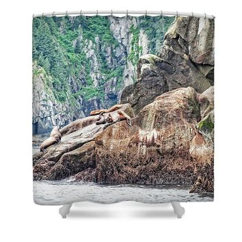 Sea Lions - Shower Curtain