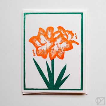 Winter Amaryllis Greeting Card