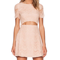 Style Stalker Maya Dress in Blush