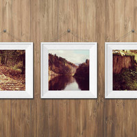 Woodland photography Fine Art Photography Set of 3 Photo Prints Autumn Nature Golden brown home decor Rustic wall art Relaxing landscape