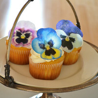 Edible Pansies- Pink, Purple, Blue - Cake & Cupcake toppers - Food Accessories