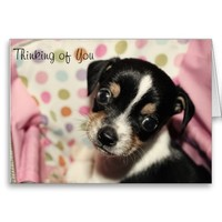 Cute Beagle Puppy Personalize Card from Zazzle.com
