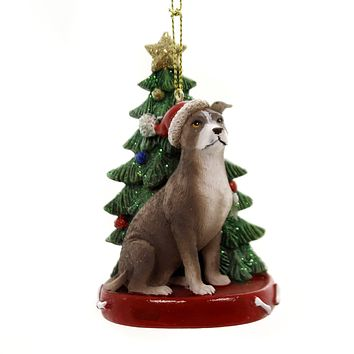 Holiday Ornaments DOG WITH TREE ORNAMENT Polyresin Gold Star C7954 Am Pitbull
