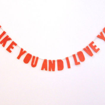 I Like You And I Love You Valentine's Day banner, Love garland