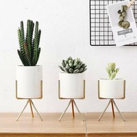 White Nordic Ceramic Decorative Vase Flower Pot Plant Holder Modern Succulent Planters Home Decor Desktop Flower Pots with Tray