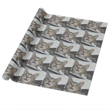 Skittles the Cat Wrapping Paper