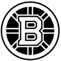 BOSTON BRUINS Vinyl Decal Sticker Hockey NHL Car Window Laptop Wall Choose Size and Color Free Shipping