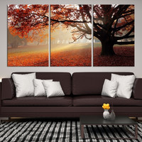 41239 - Forest Wall Art- Autumn Canvas Print- Forest Canvas- Forest Canvas Art- National Art Print- Canvas Print- Large Wall Art-