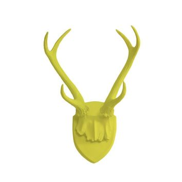 Antler Wall Mount | Deer Antler Rack | Faux Taxidermy | Yellow Resin