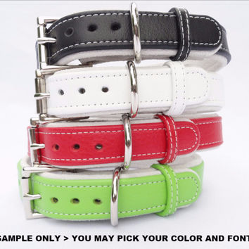"Dog collar: Leather w/ Suede - 1"" Wide Adjustable - Personalized (Sizes 12-22) Example 2"