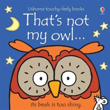 Usborne Books & More. That's Not My Owl