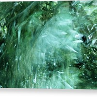Wind In Olive Grove Acrylic Print