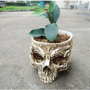 Skull Succulent Pot | Skeleton Dead Human Resin Planter Mini Cactus Flower Plant DIY Potted Desktop Balcony Vase Home Decor