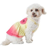Petco Smoochie Pooch Pink & Yellow Sunset Ombre Smock Dog Dress