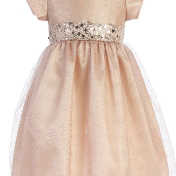 Pink Champagne Shimmering Mesh Dress w. Sequin Trim 2T-7