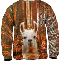 You Don_#_T Know Llama