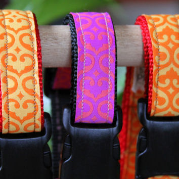 Adjustable dog collars with vibrant colors various neck sizes and modern design on Jacquard Ribbon