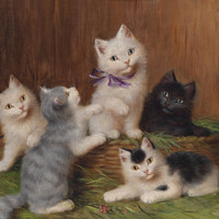 Cats Playing In A Basket Outside 1906 Vintage Poster