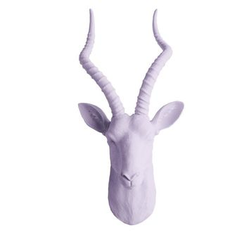 The Maasai | Large Antelope Gazelle Head | Faux Taxidermy | Lavender Resin