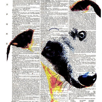 Italian Greyhound Dog, Whippet - Iggy Canine - FREE SHIPPING - Vintage English Dictionary Book Page Art Print - Page Size 8.5x11