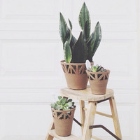 Rustic Table Top Planter