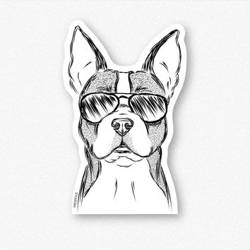 Scout the Boston Terrier - Decal Sticker