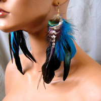 Feather Earings Peacock Feather Blue Feather by AutumnReedDesigns