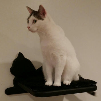 Gorgeous, comfy and sturdy, easy to install cat shelf for your kitty!