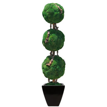 Forever Green Art Triple Moss Ball Bonsai
