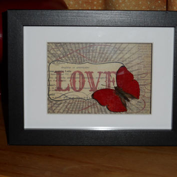 Especially for a loved one - Blood Red Slider mounted in a real wood  shadow box frame