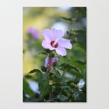 Au Naturale Canvas Print by Theresa Campbell D'August Art