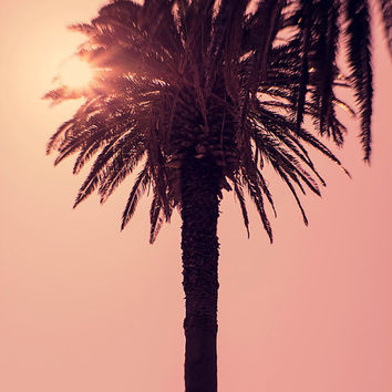 Palm tree print, sunset, summer, Palm tree wall art, pink, Portugal, nature, landscape, Palm tree Photography, wall decor, home decor