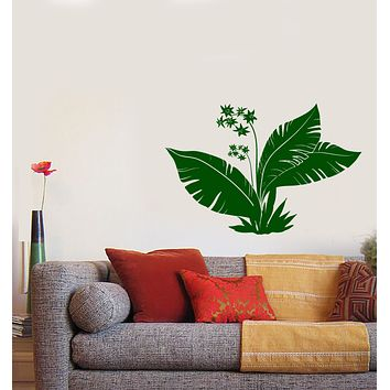 Wall Vinyl Decal Tropics Flowers Palm Tree Leaves Home Sticker Unique Gift (n1260)