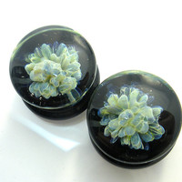 Amoeba Burst plugs Any Size- Ear Plugs Pyrex Hard Glass Ear adornment stretched boro
