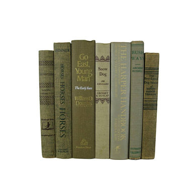 Decorative Books for Home Library, Tan, Beige, Light Brown, Gray,   Vintage Decorative Books , Gray Taupe  Book Home Decor,