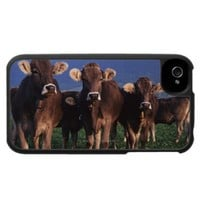 Cows 2 iPhone 4 case from Zazzle.com