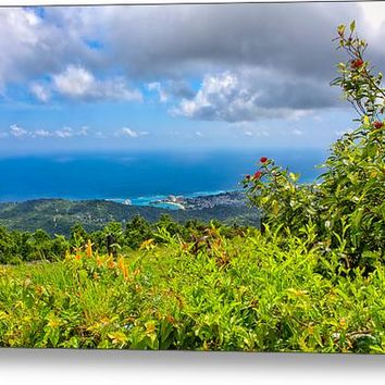 Jamaican Vista Canvas Print / Canvas Art By John Bailey