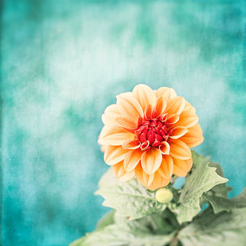 "Teal Orange Flower Photography, aqua blue turquoise coral salmon floral wall art botanical picture nature photo nursery, ""First Bloom"""