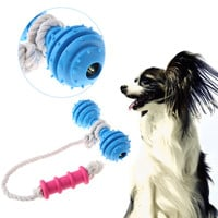 Dog Rubber Toys