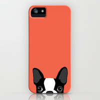 Boston Terrier iPhone & iPod Case by Anne Was Here