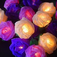 Magical Garden Fairy Lights Old English Purple Mixed Colour Rose Fairy Light String