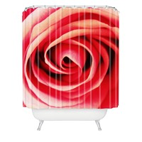 Shannon Clark Pink Rose 2 Shower Curtain
