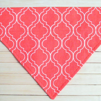 Small Dog Bandana - Over the Collar Dog Bandana - Orange Pet Bandana - Small Tangerine Pet Scarf - Bandana - Cute Dog Bandana - Dog Scarf