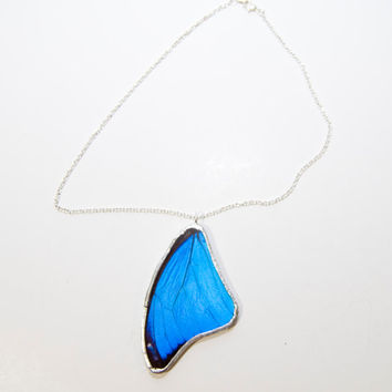 FREE SHIPPING  Real Blue Morpho Butterfly Wing Encased in Hand Cut Glass and Soldered Pendant necklace
